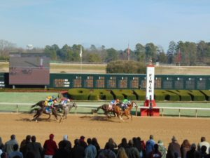 horses running toward the finish line at Oaklawn Racing