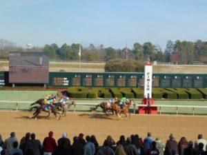 horses running toward the finish line at Oaklawn Racing