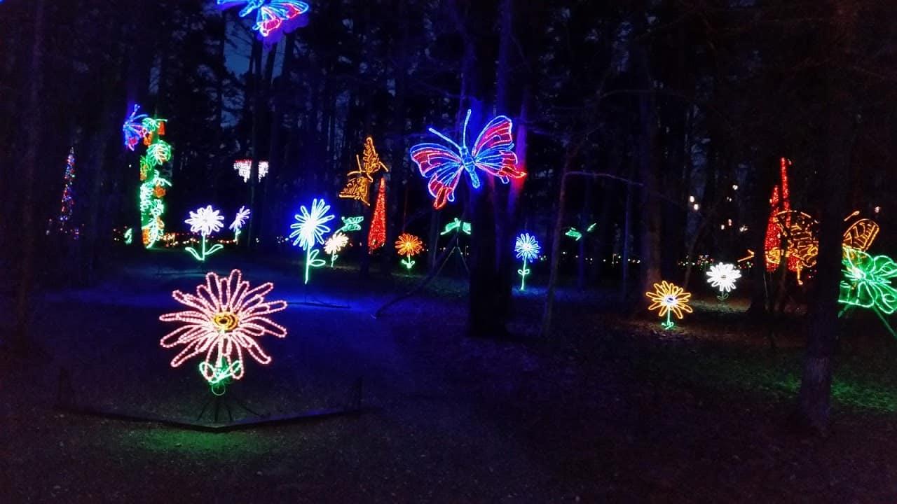 holiday lights continues at garvan gardens - Garvan Gardens Christmas Lights