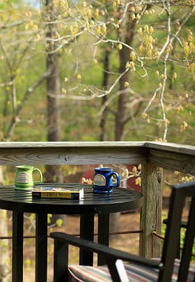 Outdoor patio with a deck chair and table set with two coffee mugs and a book on birds.